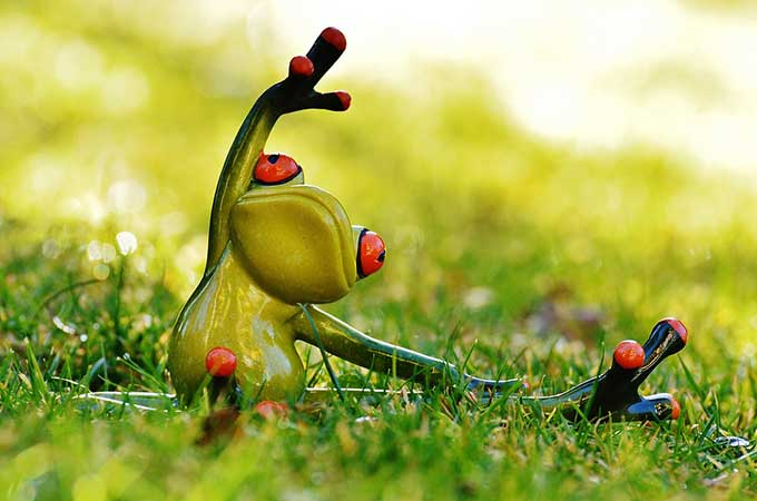 background-grenouille-yoga-02-680x450-30